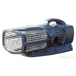 Aquamax Eco Expert 21000